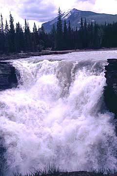 der Athabasca Wasserfall im Banff Nationalpark, Kanada