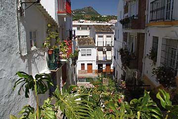 Schöne Pflanzen der Calle de La Palma in Ubrique