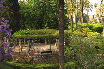 In der weitläufigen Gartenanlage des Reales Alcazares von Sevilla