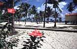 Strandidylle zum Tauchen bei Placencia im Süden von Belize
