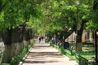 Kleine Allee im Parque Simon Bolivar in Sucre