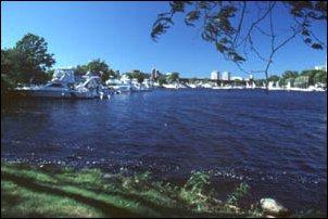 am Charles River, Boston, Massachusetts, USA