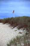 Der Strand auf Cape Cod in Massachusetts