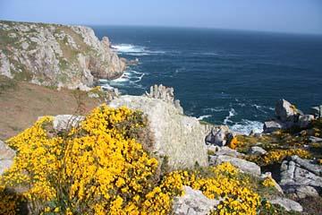 Pointe du Van, Felsen, gelber Ginster und Meeresbrausen