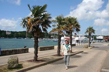 Palmen in Benodet