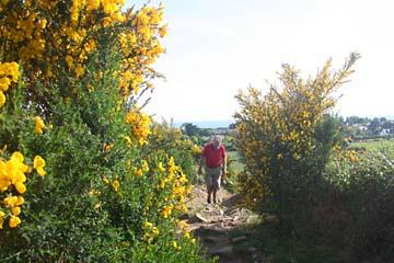 """kleine Wanderung auf den Aussichtshügel """"Butte de Cesar"""" bei Arzon"""