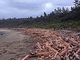 Der Rim Nationalpark in British Columbia in Canada