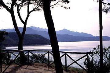 Insel Elba Bild 333 am Campingplatz Scaglieri