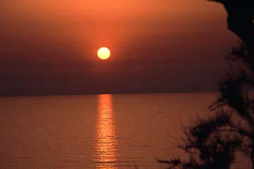 Portoferraio auf Elba Bild 423 Sonnenuntergang am Campingplatz Scaglieri