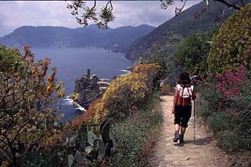 Cinque Terre Bild 498 am Küstenwanderweg