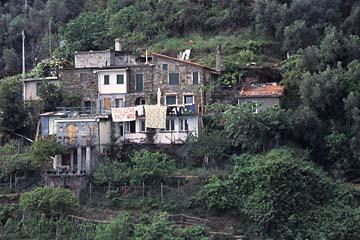 Cinque Terre Bild 524 am Terrassenhang