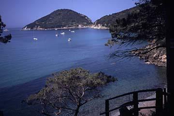 Insel Elba Bild 801 die Bucht Viticcio