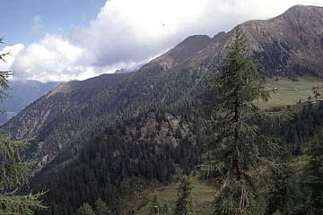 Fernwanderweg E5 - Bild 0264 Wanderweg am Hang von der Pfandleralm zur Hirzerhütte