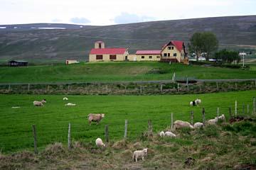 Bauernhof im Norden von Island
