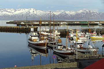 im schönen Hafen von Husavik, Island, Norden