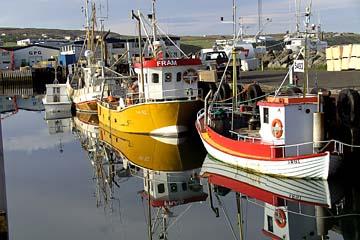 sich spiegelnde Fischerboote im Hafen von Husavik, Nordisland