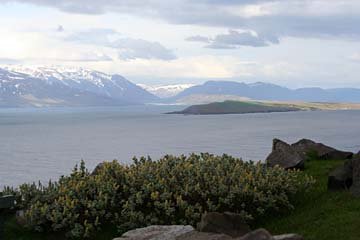am Olafsfjord, Nordisland