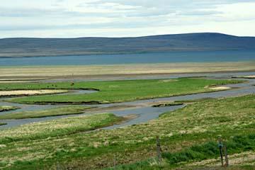 Landschaft bei Hvammstangi, Nordisland