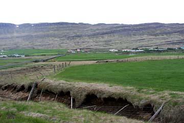 Moorlandschaft in Westisland