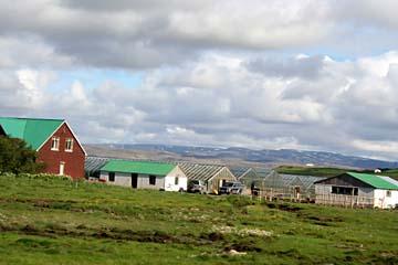 Bauernhöfe im Westen von Island