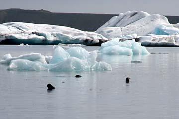 Eischollen in der Gletscherlagune Jökulsarlon, Ostisland