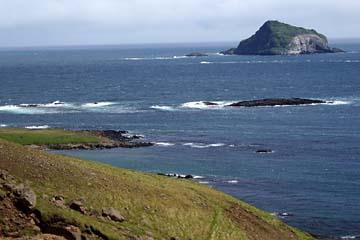 Blick auf die vorgelagerte Insel Papey im Atlantik, Ostisland