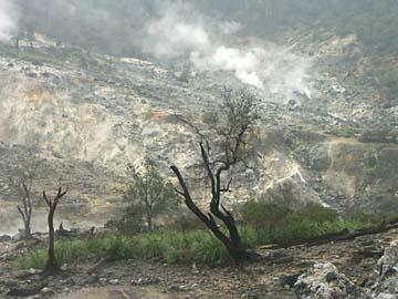 am Salak findet sich Vulkan und Natur parallel, Java, Indonesien