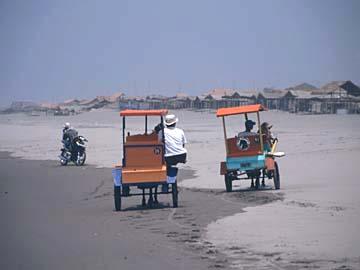 Kutschen am Strand von Parangtrits südlich von Yogyakarta, Java