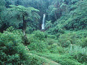 ein Wasserfall am Beginn der Tour zum Mt. Salak, Westjava, Indonesien