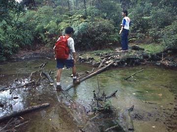 unsere Guides an einem Schlammloch im Dschungel des Mt. Salak, Java