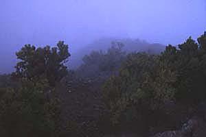 El Hierro Bild 277, Kanaren