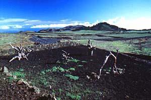 El Hierro Bild 345, Kanaren