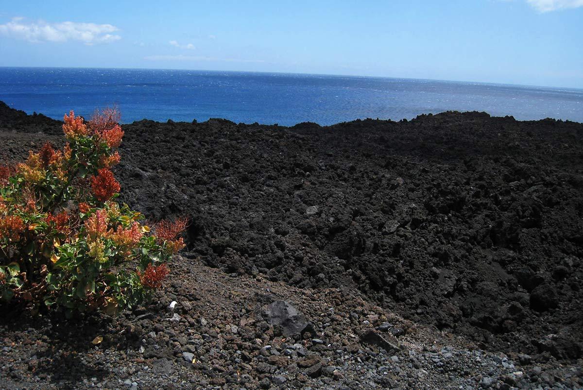 Schwarze Vulkanlandschaft im Süden von La Palma auf den Kanaren