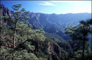 die Caldera de Taburiente, La Palma, Kanaren