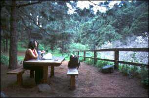 im Camping-Bereich in der Caldera, La Palma, Kanaren