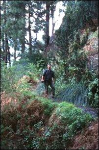 Wandern auf La Palma, Kanaren