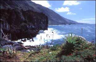 Bucht bei El Remo, La Palma, Kanaren
