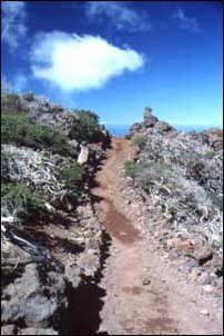 Wanderwege auf La Palma, Kanaren