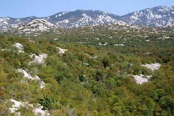 Festland/Velebitgebirge, Kroatien