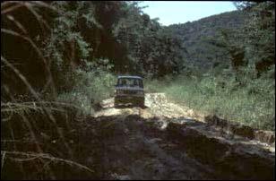 auf dem Weg nach Caracol, Belize