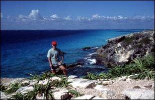 Die Küste der Isla Mujeres bei Cancun, Mexico