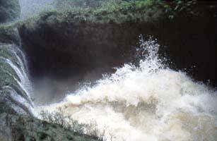 Wilde Wassergewalt an den Semuc Champey in Guatemala