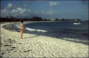 der Strand in Punta Beta, Ostküste von Yukatan, Mexiko