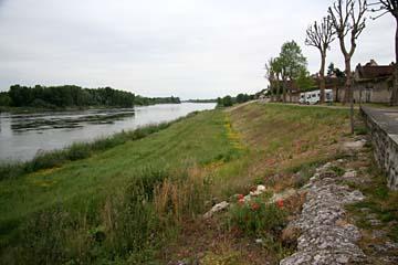 Morgen an der Loire
