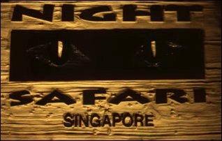 die Nachsafari in Singapur