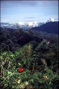 die Aussicht vom Penang Hill, Malaysia