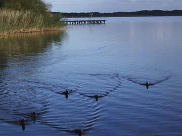 Idylle am Müritzer See bei Röbel