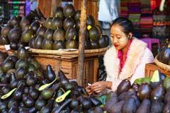 Eine moderne Frau verkauft Avocados auf dem Markt in Taunggyi in Myanmar