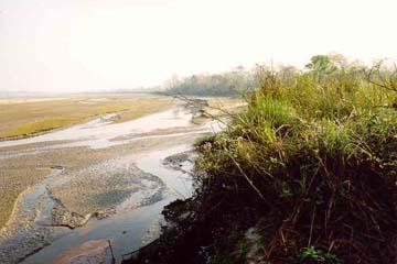 Grasland und angrenzender Fluss, Chitwan Nationalpark, Nepal