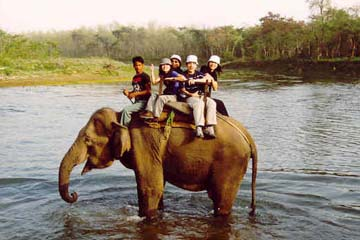 Hoch zu Elefant durch den Chitwan National Park, Nepal
